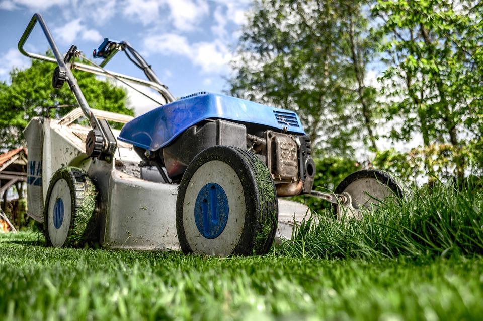 Chouchoutez votre pelouse